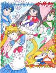 W90C - Sailor Moon