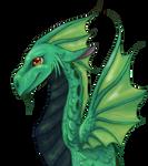 A dragon for Grandad
