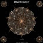 Radiolarian Budhism