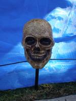 Skull Stock by Billy-jean-stock