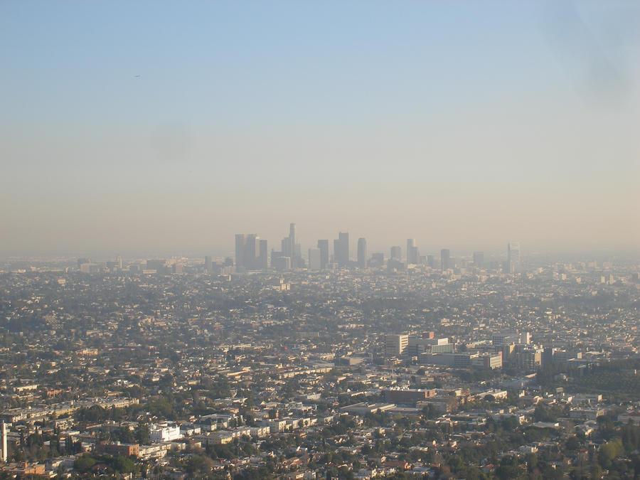 Los Angeles city stock