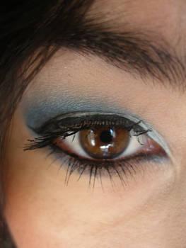 Blue 4 eye stock