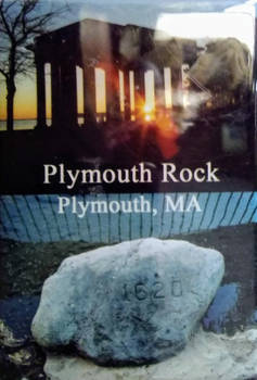 My Plymouth Rock magnet for the fridge