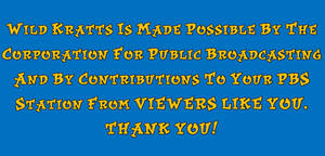 Wild Kratts - CPB and Viewers Like You