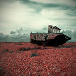 dungeness I.