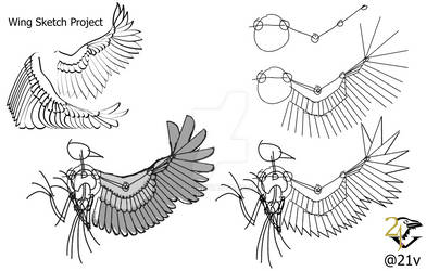 Drawing wing Technique