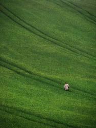 Going to the top by WojciechGorski