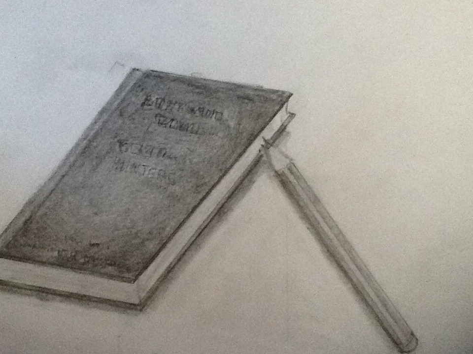 Book and pencil sketch by harunala1