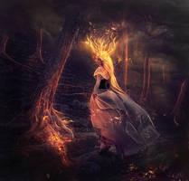 Pyrolatria by llamacria