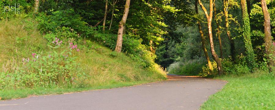 Trail - 1 by JDS-photo