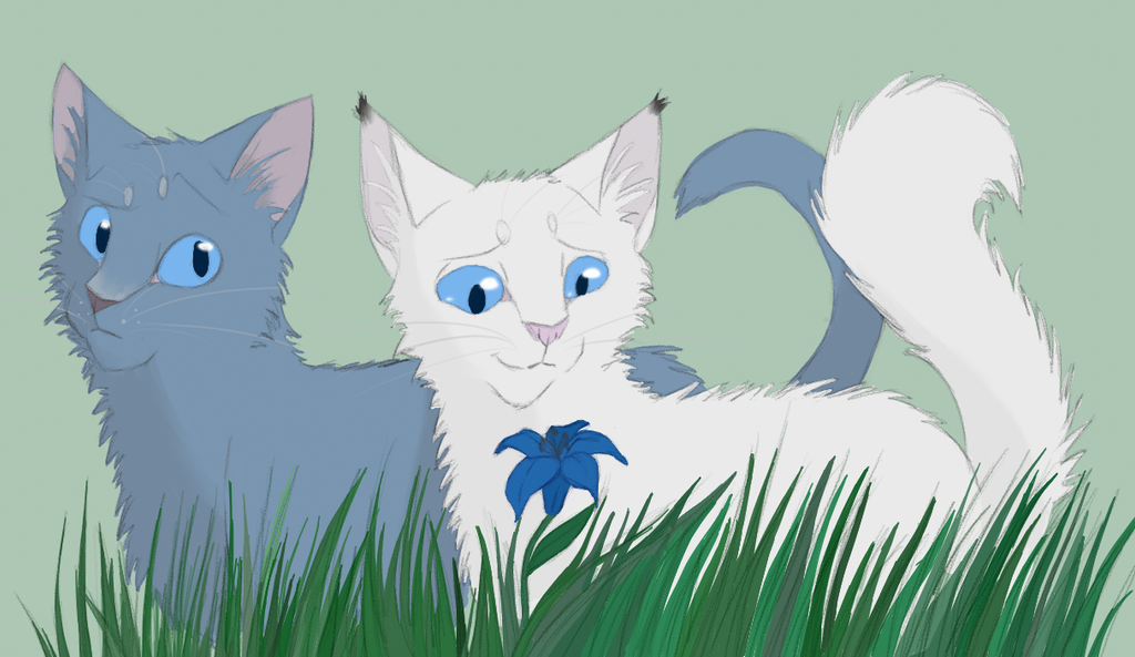 Images Of Warriors Cats Snowfur And Bluefur
