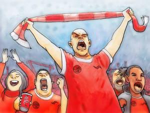 Fan (soccer)