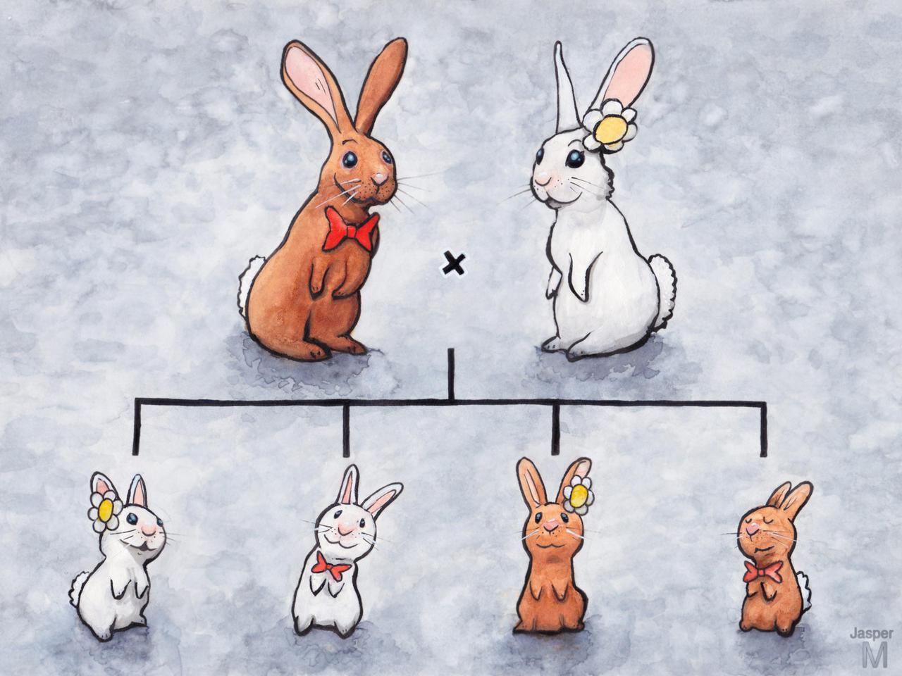 Bunny family by Jasper-M