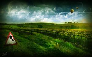 Vineyard by nuaHs