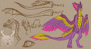 Dragon Concepts 1- Spectral Wings
