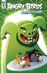 Angry Birds Flight School Cover 2