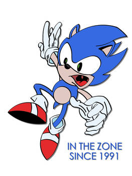 Sonic: In The Zone Since 1991