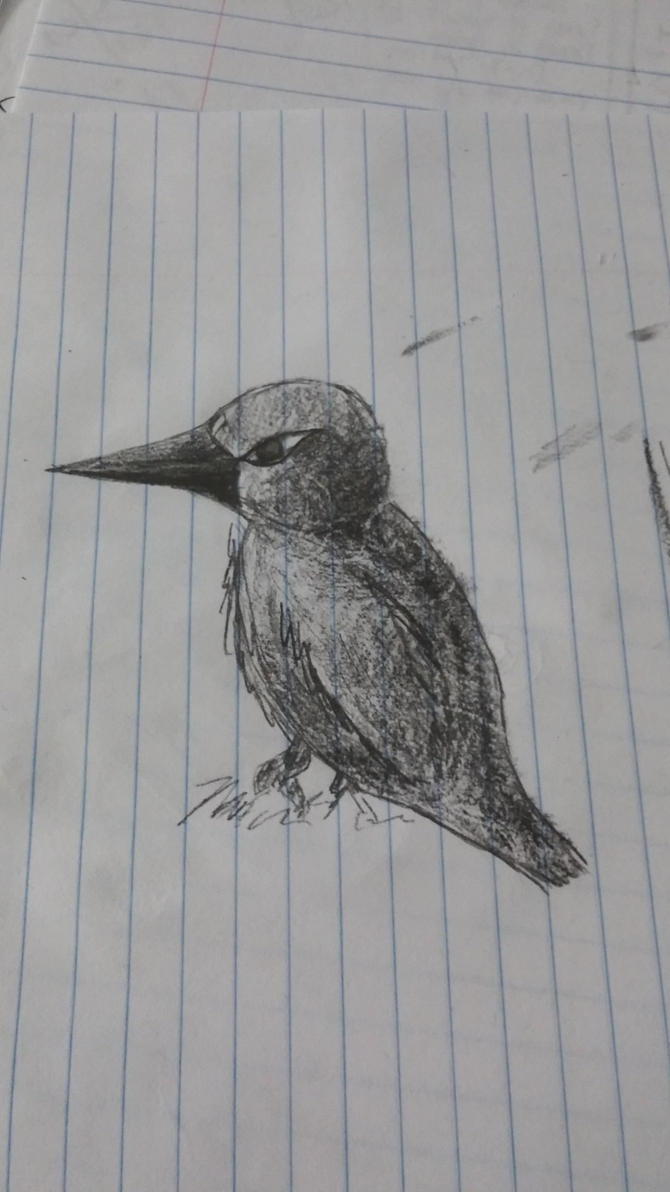 Shading Practice Birdy by KellyTheAlien