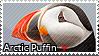 Arctic Puffin - Stamp2 by l---Skipper---l
