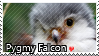Pygmy Falcon - Stamp1 by l---Skipper---l