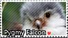 Pygmy Falcon - Stamp1 by l---Skipper---l