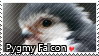 pygmy Falcon - Stamp2 by l---Skipper---l