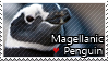 Magellanic penguin - Stamp by l---Skipper---l