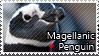 Magellanic penguin - Stamp by l---Skipper---l