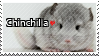 Chinchilla - Stamp by l---Skipper---l