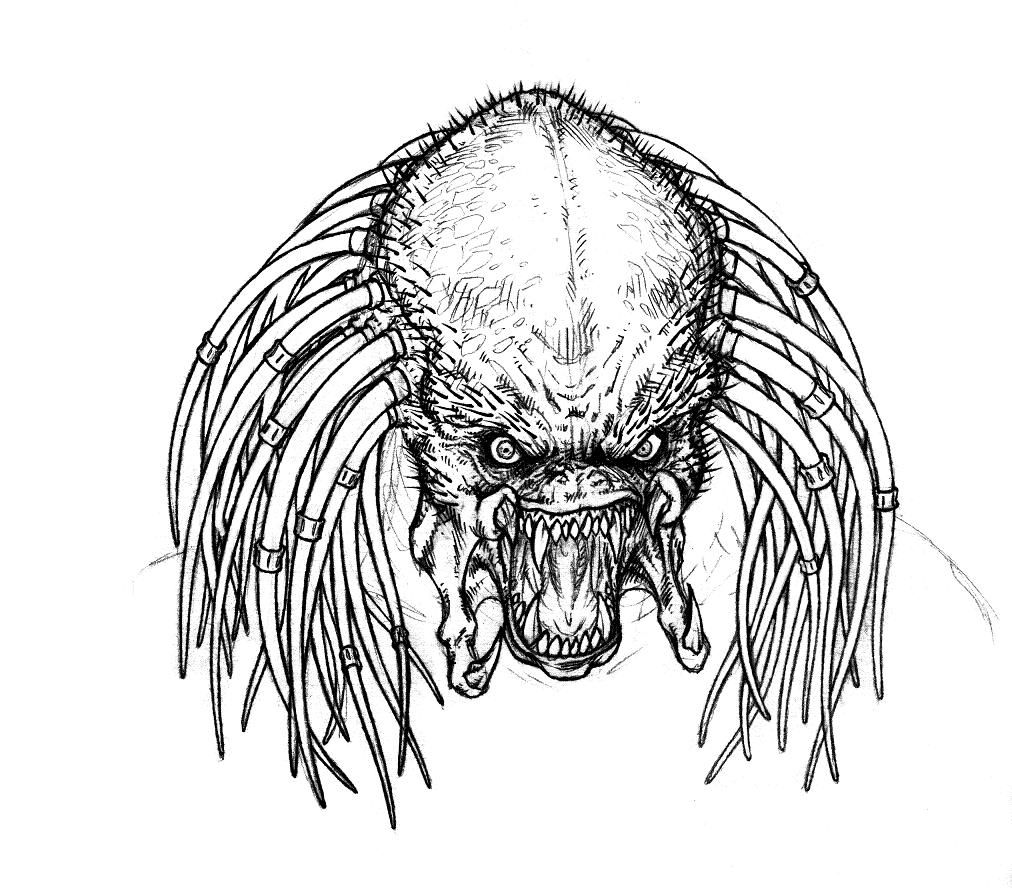 Predator face Sketch by Murd-Ed on DeviantArt