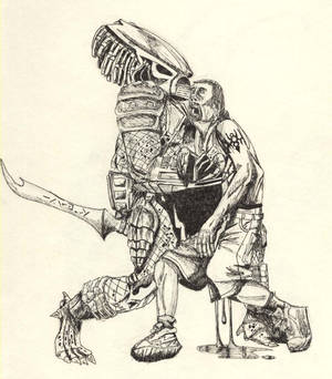 sketch of predator