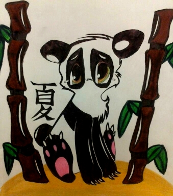Panda Contest Summer 2012 by HeartlessImmortalIvy