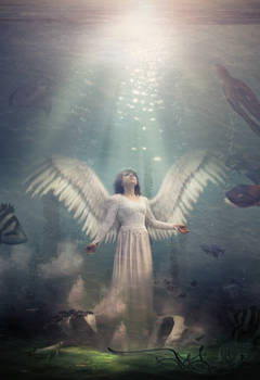 Sea Angel