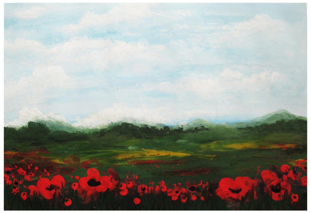 Poppies by Alena-48