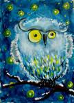 Owl by Alena-48