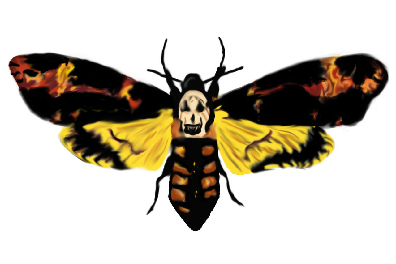 Silence of the Lambs: Death Head Moth by Konakoro on ...