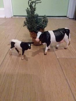 My Safari LTD holestein bovine figures