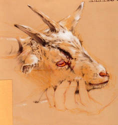 Capra Hircus Sketch 2 by kakashi1920