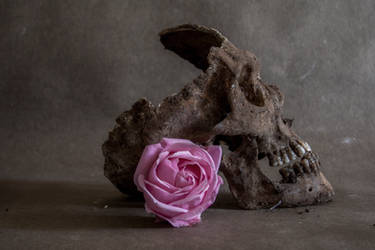 Death and Beauty