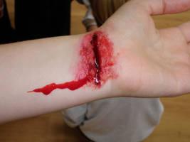 Cut my wrists by IAmNotBitter