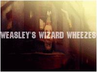 Weasleys Wizard Wheezes by avadaxkedavra