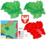Voivodeship Warsaw collage