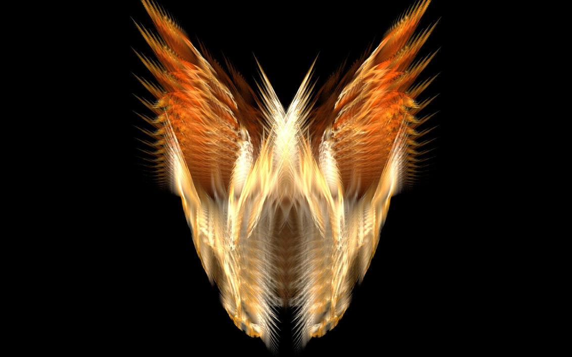 Transcendent Wings by mtheklarf on deviantART
