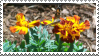 Flowers by MorbidPirate-Stamps