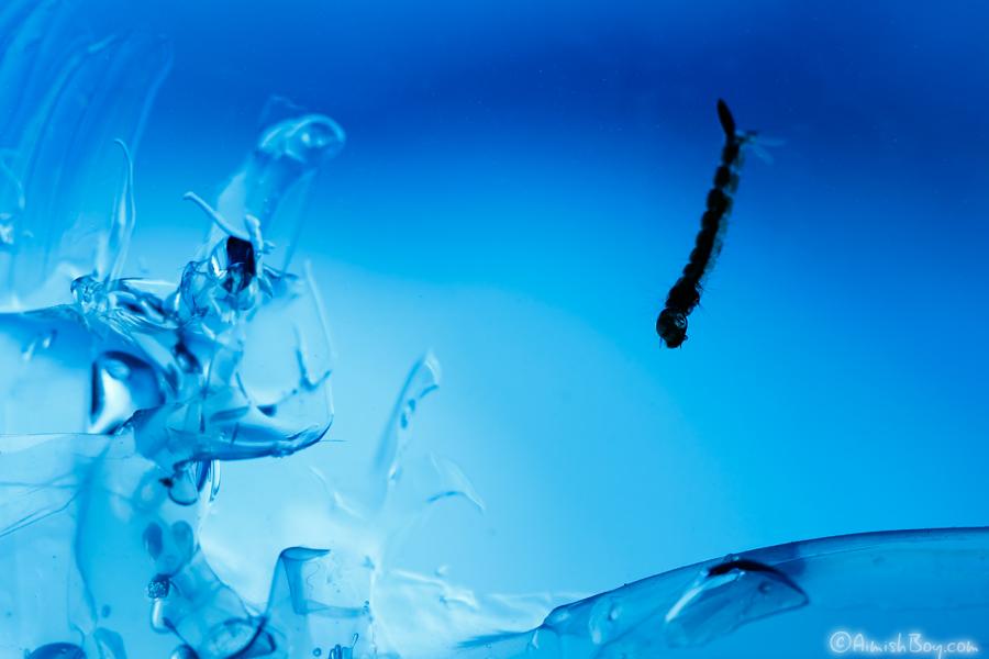 Under Arctic Ice by AimishBoy