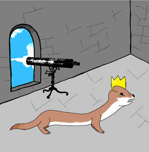 Weasel King: Flip the fuck out