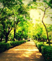 My Green Lane by lemrac