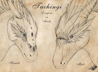 Tachingi - Dragons in Masks by Natoli