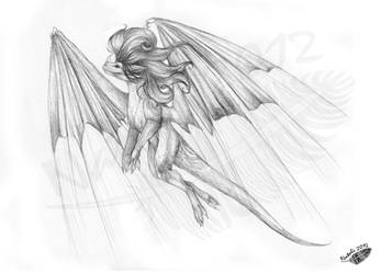 Fenrixion Contest Prize - Flying by Natoli
