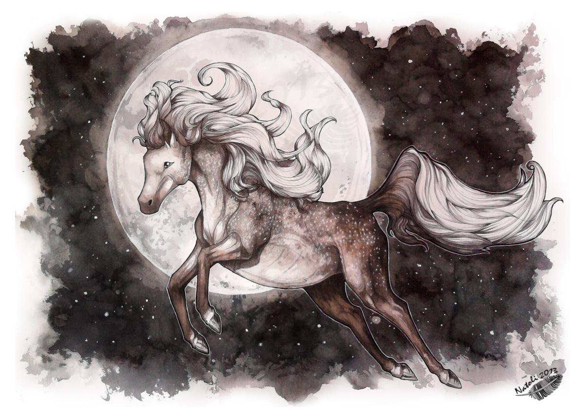 Dapple and Stars by Natoli